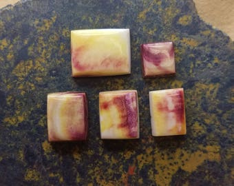 Spiny Oyster Shell Purple & Yellow Square Cabochon Set/ backed