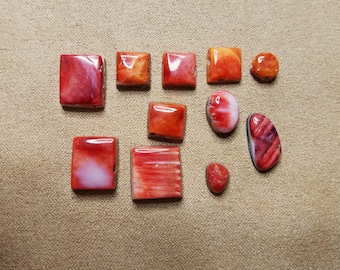 45% OFF Red and Orange Spiny Oyster Shell Freeform Circle Square Cabochons/ Seconds/ backed