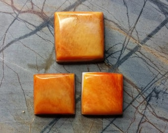 Orange Spiny Oyster Shell Square Cabochon Set/ Set of 3/backed/