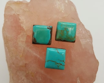 Green & Brown Pilot Mountain Turquoise Small Square Cabochon Trio/ backed