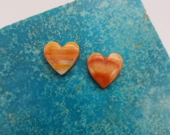 Orange and White Tiger Striped Small Spiny Oyster Shell Heart Cabochon Pair/ backed
