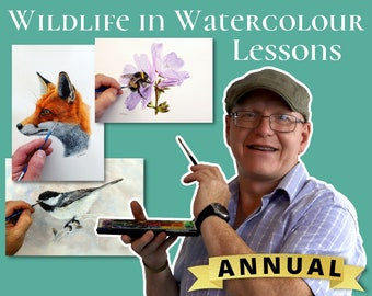 Watercolour Painting Lessons, Online Watercolor Videos, How to Paint Wildlife, Learn to Paint Animals, Realistic & Detailed Fine Art Course