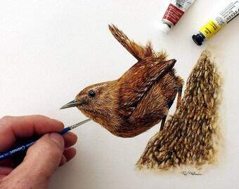 Wren, Watercolour Painting, Original Bird Artwork, Garden Bird, Illustration Art, Song Bird, Watercolor Birds, Wildlife Animals