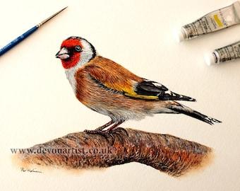 Watercolour Painting, Original Goldfinch, Illustration Art, Bird Artwork, Watercolor Birds,  Realistic Bird, Wildlife Animals
