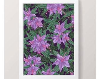 Azalea - Art Print // Illustrated Botanical Wall Art / Illustration Poster / Flowers & Plants Drawing / Home Decor