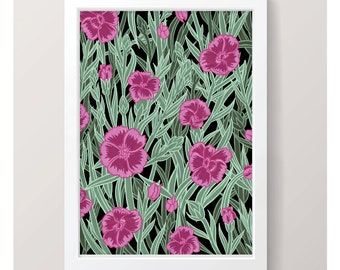 Dianthus - Art Print // Illustrated Botanical Wall Art / Illustration Poster / Flowers & Plants Drawing / Home Decor