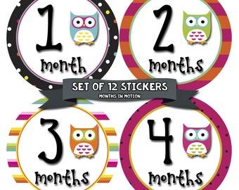 Baby Month Stickers, Baby Boy Gift, Milestone Stickers, Monthly Sticker, Monthly Baby Boy Stickers, Baby Month Milestone Stickers Owls 342