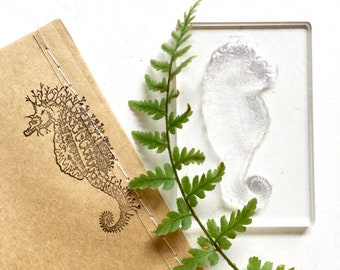 Seahorse Clear Rubber Stamp