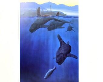 Vintage 1991 Tsimshian Bill Helin Giclee Numbered Print Native Orca Pod