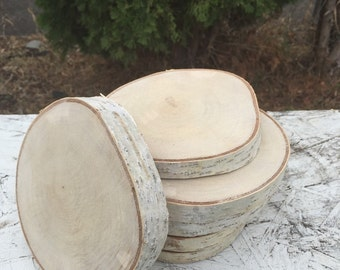 10 Log birch Wood (4-5in) coasters disks center piece diy Wedding party shower wooden rustic natural glam