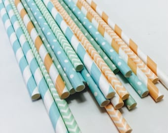 Mint green peach light blue Striped polka dot chevron Paper Straws Ballerina first girl birthday girly wedding baby bridal shower candy