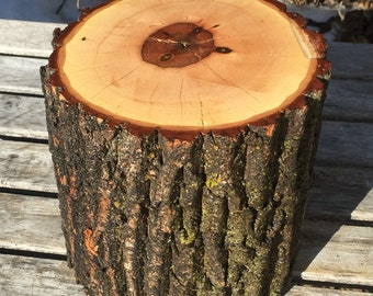 Large Log Maple Wood Rustic Cake Smash Cake Stand Photography Prop photo shoot, where the wild things are, boho, lumberjack party