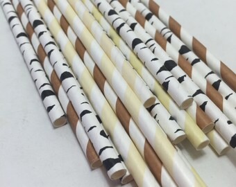 24 s'mores straws rustic Favor Smores containers forest riding hood fairy tale camping party table decoration decor favors wedding shower
