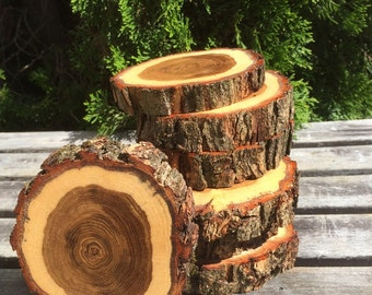 10 Black Locust Wood coasters (4-5in) disks center piece diy Wedding party shower wooden rustic natural glam