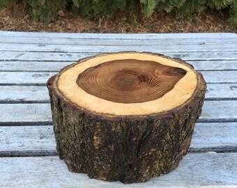 Large Log Elm Wood (8-9 inch) Rustic Cake Smash Cake Stand Photography Prop photo shoot