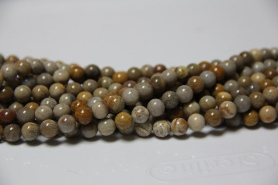 "Fossil Coral 8mm smooth round beads 16"" length full strand"