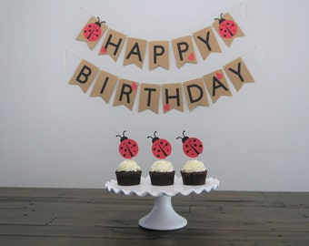 Lady Bug Birthday Banner Girl First Ladybug Themes Theme Party