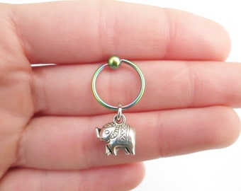 Rainbow Elephant cartilage hoop piercing