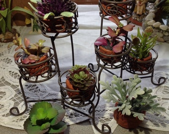 Exceptionnel Miniature Wrought Iron Plant Stand With Potted Succulents, Fairy Garden  Potted Plants, Miniature Potted Plants, Fairy Garden Accessory