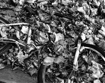 The Autumn Bike - B&W Fine Art Photograph - Original Wall Art