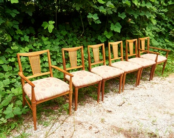Mid Century Modern Dining Chairs Set Of 6   Vintage Set Of Chairs   Cane  Back Chairs   Mid Century Boho Furniture