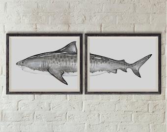 PRINT of Tiger Shark Painting (2 Piece Set)