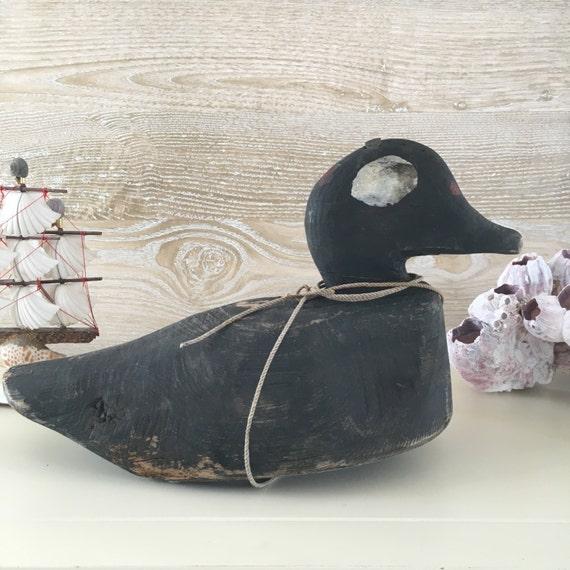 Maine Note Cards-Eider Ducks