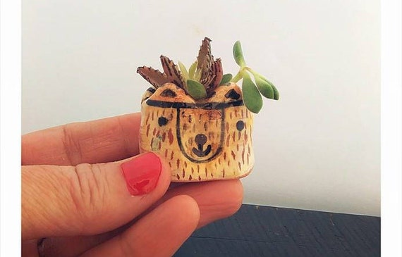 little pot miniplant succulent ceramic unique animals cute colored wedding gift mother day hand made craft love décoration garden clay