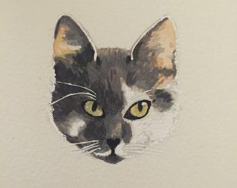 portrait de chat sur mesure
