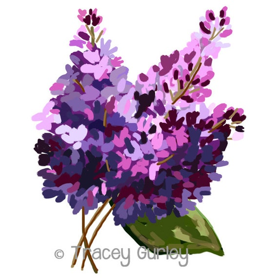 lilacs original art lilac clip art lilac painting etsy rh etsy com lilac clip art flowers lilac borders clip art