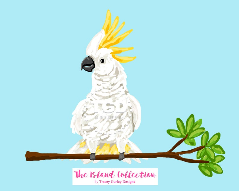 Preppy Cockatoo Clip Art  Original Art download preppy clip image 0