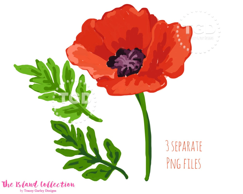 Red Poppy Clip Art Watercolor Poppies Watercolor Floral Etsy