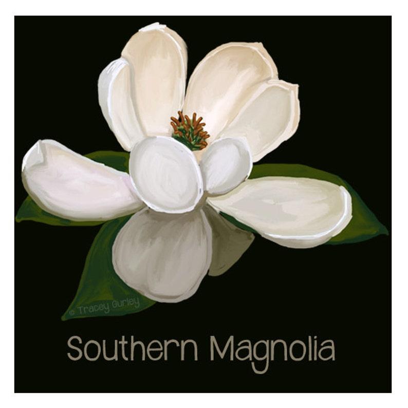 Magnolia Art  Original Art magnolia clip art magnolia image 0