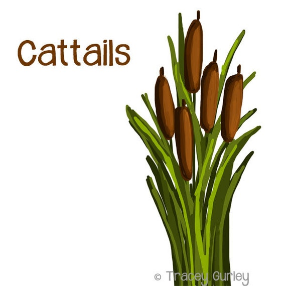 cattails graphic original art cattails clip art cattails rh etsy com cattail clipart free cattail clipart black and white