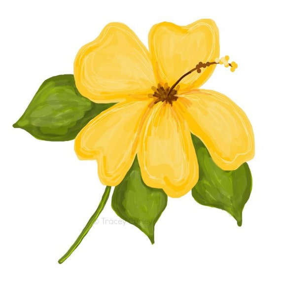 Yellow Hibiscus Original Art Digital Download Yellow Etsy