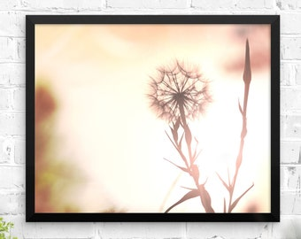 Dandelion wall art nature photography framed poster pink floral nature photo bedroom decor living room art nursery prints
