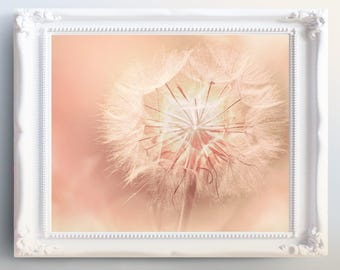 Dandelion Print, Flower Wall Art, Printable Poster, Digital Download, Pink Flowers Photography, Pink Flower Decor, Botanical Flower Print