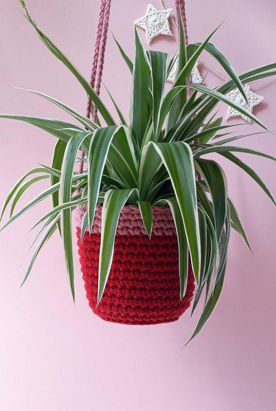 Häkeln Sie Pflanze Topf Aufhänger Rot Und Rosa Etsy