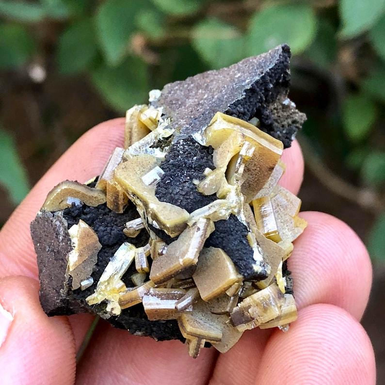 Rare 21 8g Thick Wulfenite Crystal Specimen Mottramite - Level 6, Ojuela  Mine, Mapimí, Durango, Mexico - Item:WF17345