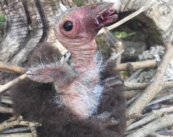 Baby condor preistorico