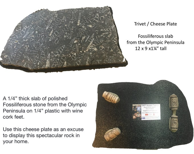 Olympia; A 9 x 12 x 1 1/4' stone trivet/ Cheese plate of fossiliferous stone obtained on the Olympic Peninsula