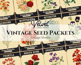 VINTAGE SEED PACKETS Set of 12 Vintage Printable Floral Flowers Gardening Ephemera Antique Collage Sheets Digital Download 300dpi Jpeg