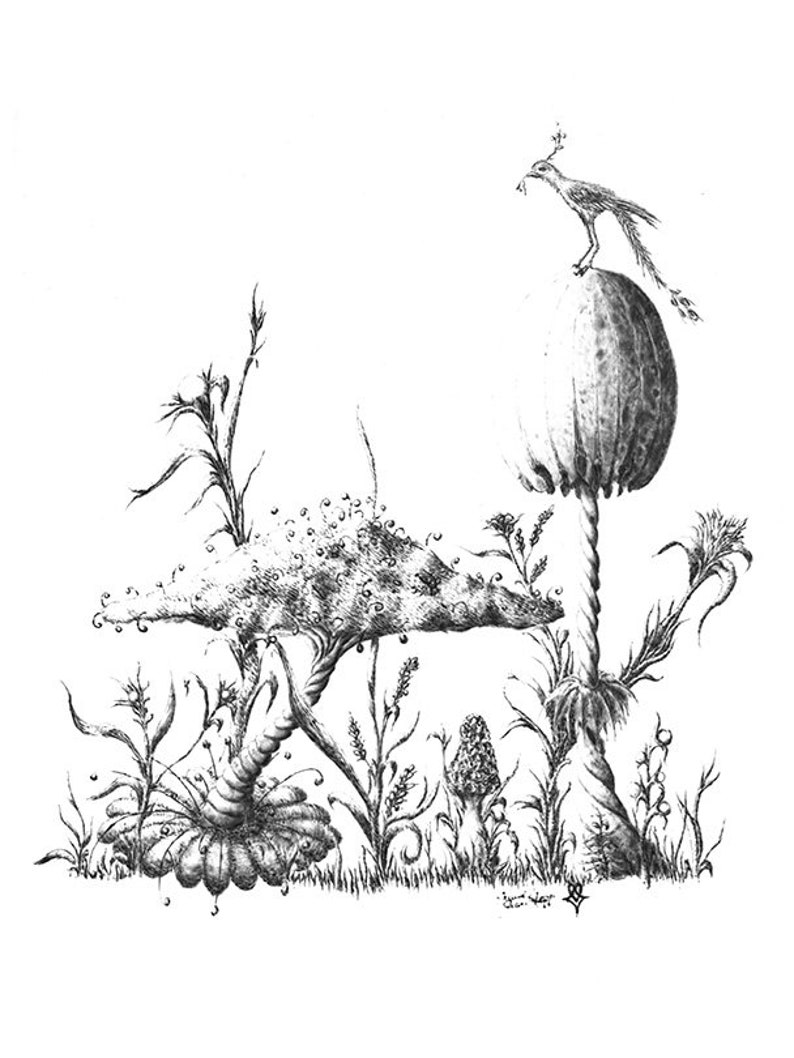 Setting Atop A Shroom Spire Print Bird Drawing Pyrography Monochromatic Sepia Tones Surrealistic Drawing Mushroom Art Morbid Monster