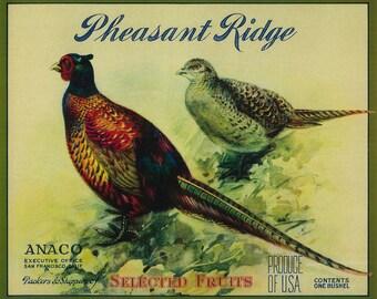 e7d15a78e2c942 Pheasant Ridge Apple Crate Label (Art Prints, Wood & Metal Signs, Canvas,  Tote Bag, Towel)