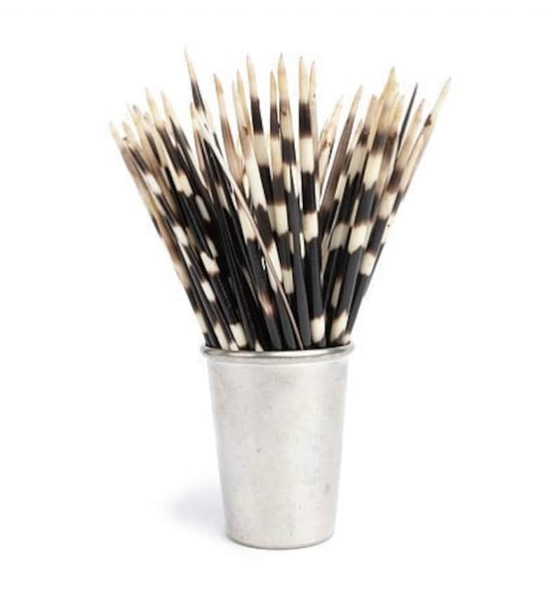 African Porcupine Quills Lot of 3