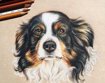 Custom Pet Portrait, Dog Portait, Cat Portait, Dog Drawing, Cat Drawing, Pet Drawing, Pet Portrait Artist, pet memorial, custom art