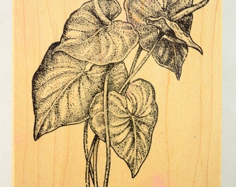 House Plant 783-A302 Stencil