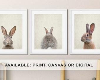 Bunny Print for Nursery, Nursery Bunny Print, Peek a boo Bunny, Bunny Nursery Decor, Bunny Nursery Picture, Rabbit Baby Gift Print/Canvas/Di