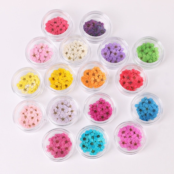 20Pcs Natural Pressed Flower Mixed for DIY Phone Case Decoration Nail Art