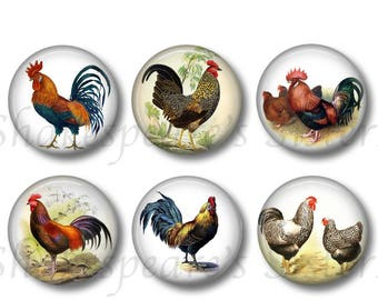 Rooster Magnets - Set of Six 1.5 Inch Magnets - Chicken Magnets - Farm Kitchen Rooster Decor